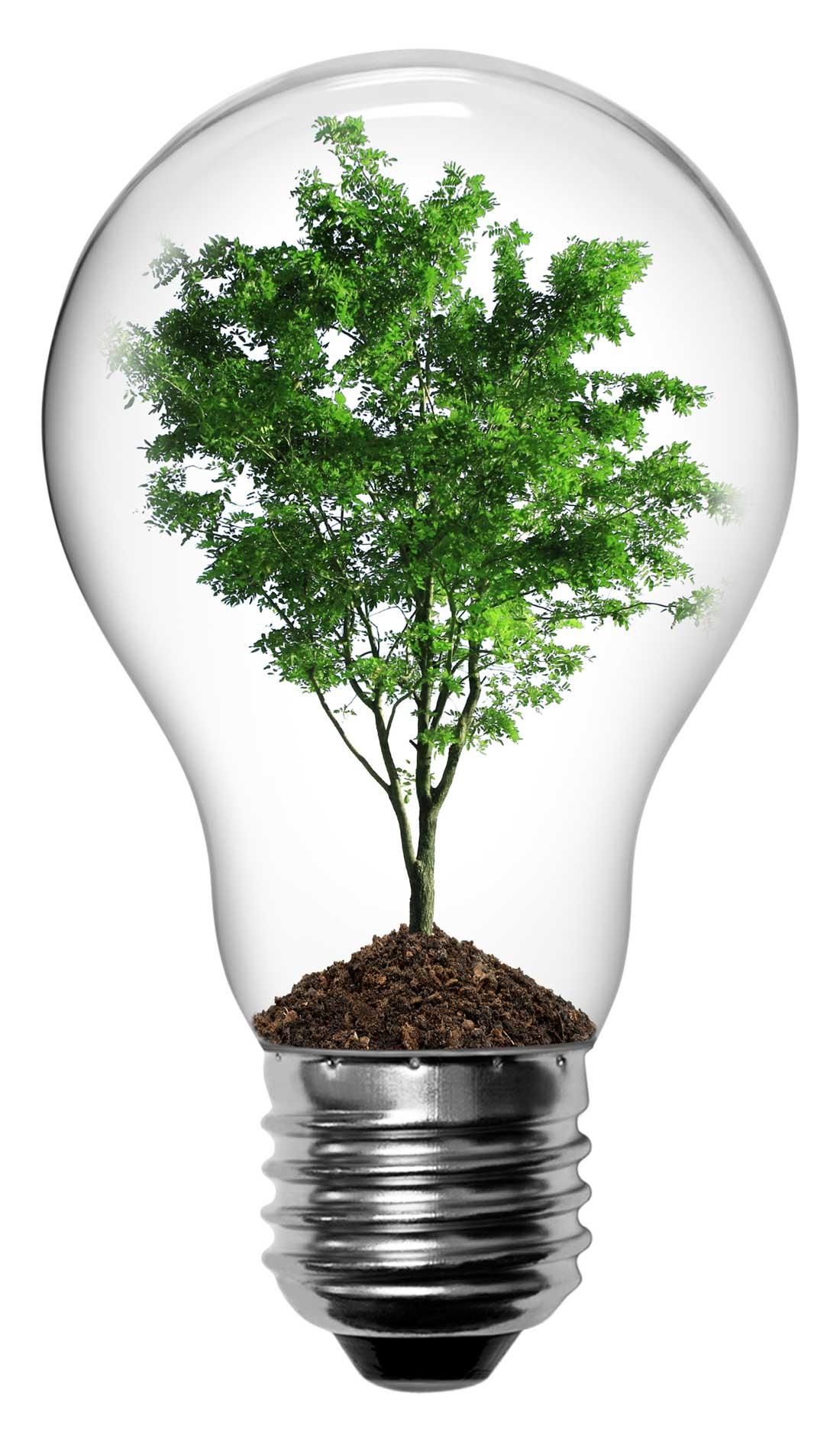 Light-bulb-power-of-text